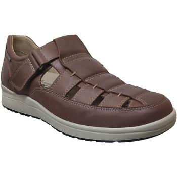 Schoenen Heren Sandalen / Open schoenen Mephisto Vilson Middenbruin leer