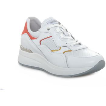 Schoenen Dames Lage sneakers Nero Giardini 707 SKIPPER BIANCO Bianco