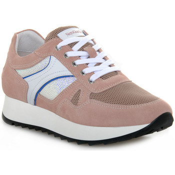 Schoenen Dames Lage sneakers Nero Giardini VELOUR PEONIA Grigio