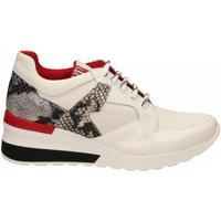 Schoenen Dames Lage sneakers Tosca Blu PRIMULA co4-roccia