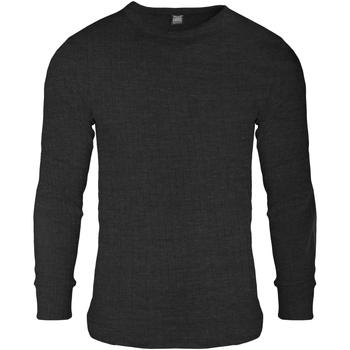 Textiel Heren Sweaters / Sweatshirts Floso  Houtskool