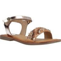 Schoenen Meisjes Sandalen / Open schoenen Gioseppo 58936G Bruin