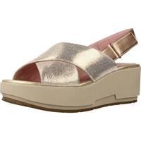Schoenen Dames Sandalen / Open schoenen Stonefly KETTY 5 Bruin