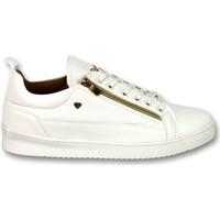Schoenen Heren Lage sneakers Cash Money CMP White Gold White Wit