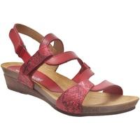 Schoenen Dames Sandalen / Open schoenen Xapatan 2164 Rood leer