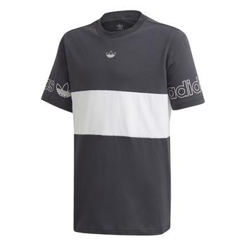Textiel Jongens T-shirts korte mouwen adidas Originals PANEL TEE Grijs / Wit