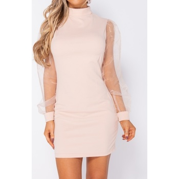 Textiel Dames Korte jurken Parisian Organza Sheer Puff Long Sleeve Bodycon Mini Dress Roze