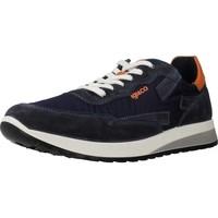 Schoenen Heren Lage sneakers IgI&CO 5127422 Blauw
