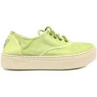 Schoenen Dames Sneakers Natural World Basket Platform Verte 641-6112E Groen