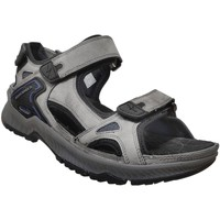 Schoenen Heren Sandalen / Open schoenen Allrounder by Mephisto Honduras Lichtgrijs