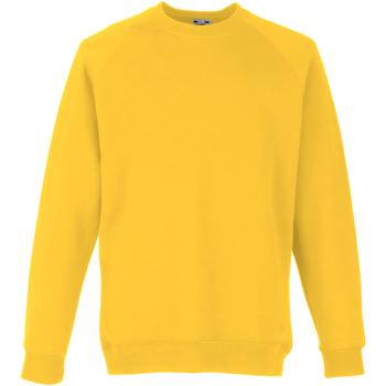 Textiel Kinderen Sweaters / Sweatshirts Fruit Of The Loom 62039 Zonnebloem