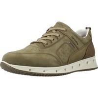 Schoenen Heren Lage sneakers IgI&CO 5125222 Groen