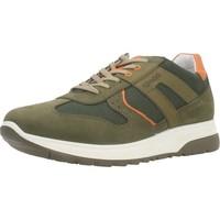 Schoenen Heren Lage sneakers IgI&CO 5129622 Groen
