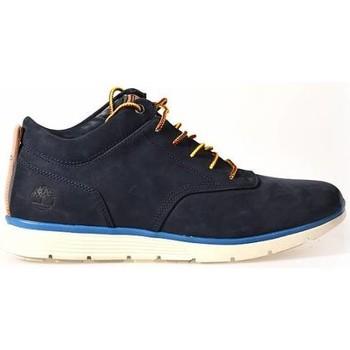 Schoenen Heren Lage sneakers Timberland Men Killington half cab Blauw