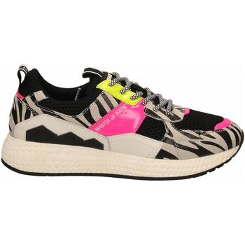 Schoenen Dames Lage sneakers Moa Concept FUTURA BLACK MESH zebra