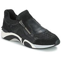 Schoenen Dames Lage sneakers Ash HOP Zwart