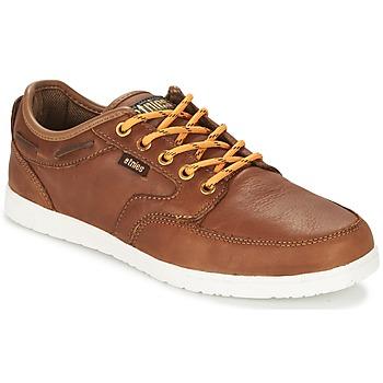 Schoenen Heren Lage sneakers Etnies DORY Bruin