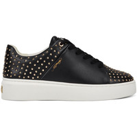 Schoenen Dames Lage sneakers Ed Hardy - Stud-ed low top black/gold Zwart