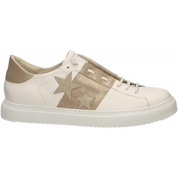 Schoenen Dames Lage sneakers Essex VITELLO STELLE E FASCIA bianco-oro