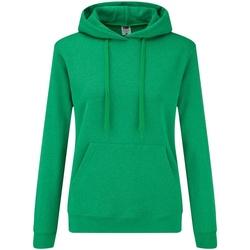 Textiel Dames Sweaters / Sweatshirts Fruit Of The Loom 62038 Heather Groen