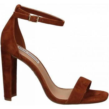 Schoenen Dames Sandalen / Open schoenen Steve Madden FRANKY SUEDE chestnut