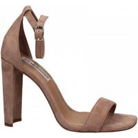 Schoenen Dames Sandalen / Open schoenen Steve Madden FRANKY SUEDE mauve