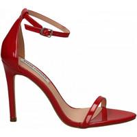 Schoenen Dames Sandalen / Open schoenen Steve Madden ABBY PATENT red