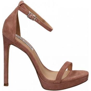 Schoenen Dames Sandalen / Open schoenen Steve Madden MILANO SUEDE mauve