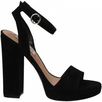Schoenen Dames Sandalen / Open schoenen Steve Madden GESTURE SUEDE black