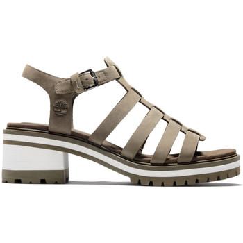 Schoenen Dames Sandalen / Open schoenen Timberland Violet marsh fisherman sandal Groen