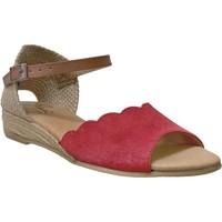 Schoenen Dames Sandalen / Open schoenen Pinaz 324 Rood / bruin