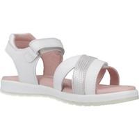 Schoenen Meisjes Sandalen / Open schoenen Garvalin 202642 Wit