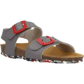 Schoenen Jongens Sandalen / Open schoenen Garvalin 202475 Grijs