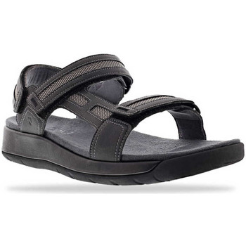 Schoenen Heren Sandalen / Open schoenen Joya Capri 16 Grey 534