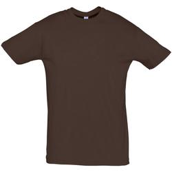 Textiel Heren T-shirts korte mouwen Sols REGENT COLORS MEN Marrón