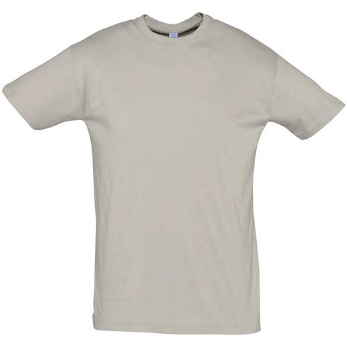 Textiel Heren T-shirts korte mouwen Sols REGENT COLORS MEN Gris