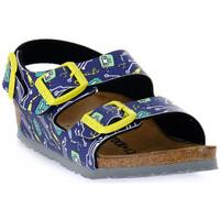 Schoenen Kinderen Sandalen / Open schoenen Birkenstock MILANO ROBOTS BLUE CALZ S Blu