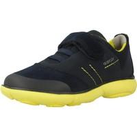 Schoenen Jongens Lage sneakers Geox J NEBULA BOY Blauw