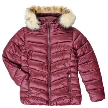 Textiel Meisjes Dons gevoerde jassen Kaporal MADO Bordeau