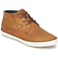 Schoenen Heren Hoge sneakers Faguo WATTLE Bruin