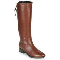Schoenen Dames Hoge laarzen Geox FELICITY Bruin