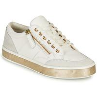 Schoenen Dames Lage sneakers Geox LEELU Wit