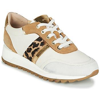 Schoenen Dames Lage sneakers Geox TABELYA Wit / Luipaard