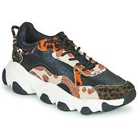 Schoenen Dames Lage sneakers Gioseppo ALEKSIN Zwart / Oranje