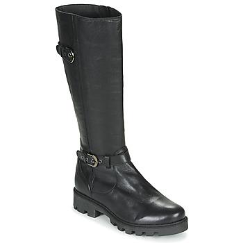 Schoenen Dames Hoge laarzen Pataugas CORA F4F Zwart