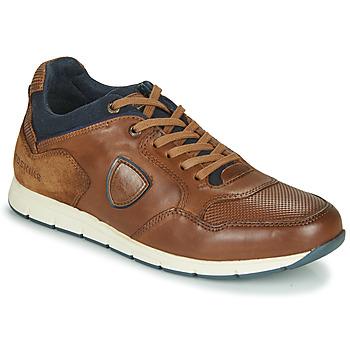Schoenen Heren Lage sneakers Redskins SARIETTE Cognac