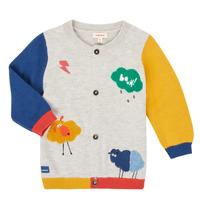 Textiel Jongens Vesten / Cardigans Catimini CR18020-20 Multicolour