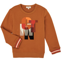 Textiel Jongens Sweaters / Sweatshirts Catimini CR15024-63-C Bruin