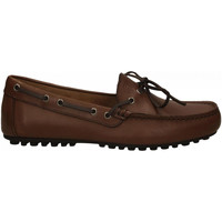 Schoenen Heren Mocassins Frau SPINNER brown