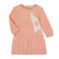 Textiel Meisjes Korte jurken Noukie's Z050082 Roze